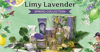 Limy Lavender ライミーラベンダー SPRING COLLECTION